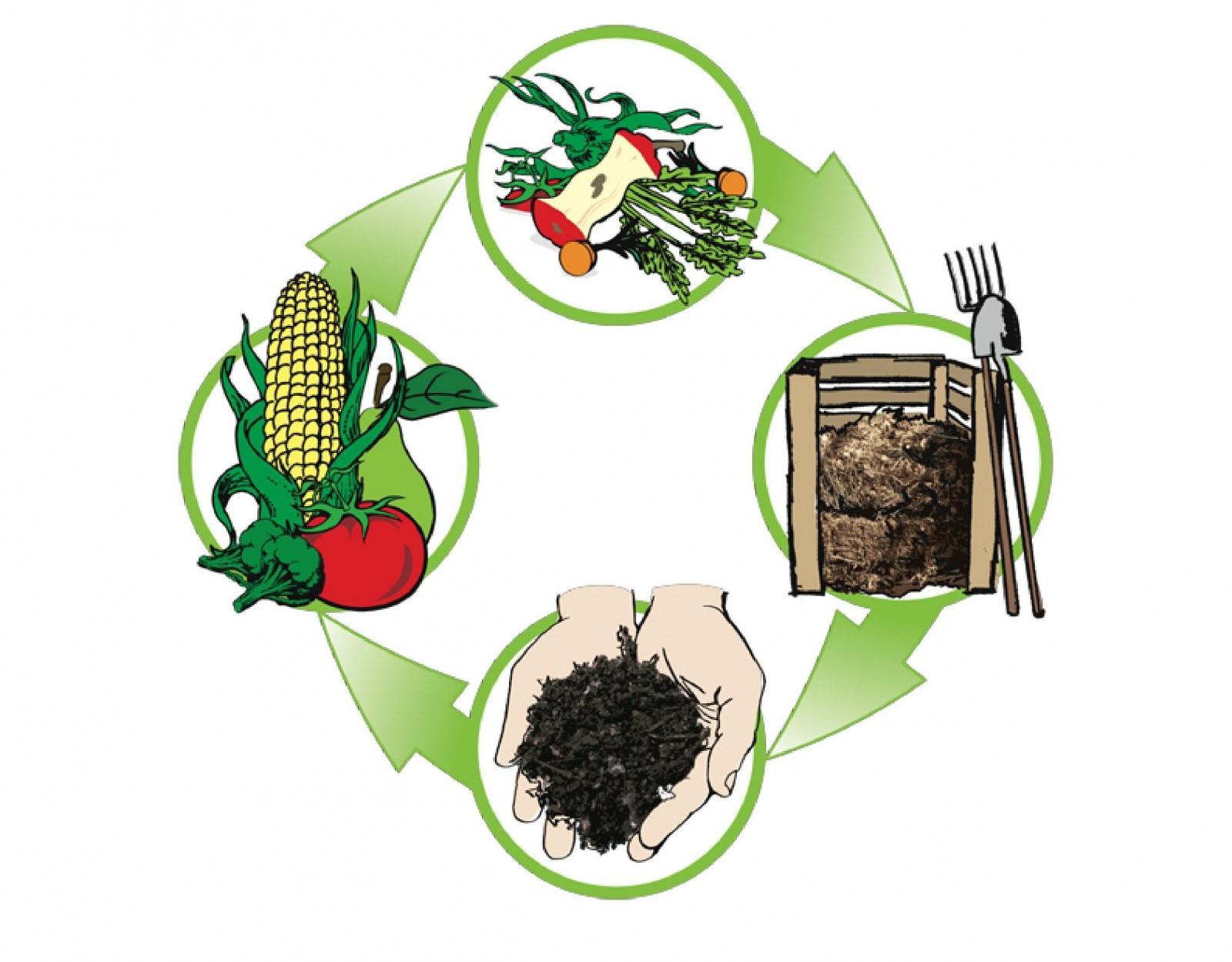 """""""Kompostiranje"""", predavanje Ivane Paladin Soče u sklopu projekta ReDu"""